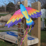 A bird kite ready to take flight at the art bench in Somerset, Wisconsin, during the first annual St.  Croix Bird Migration Celebration, sponsored by Tropical Wings and The Phipps.